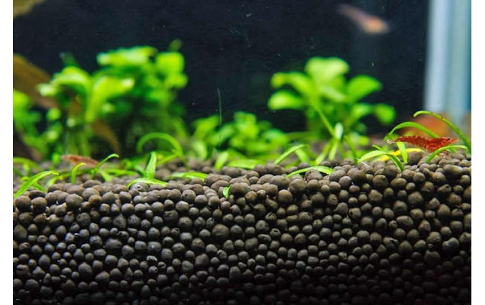 Лучшие питательные грунты для аквариума. Выбираем грунт