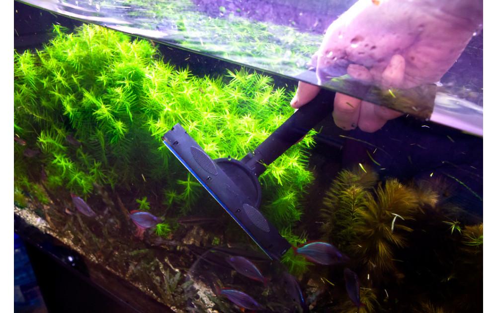 Регулярный уход за аквариумом