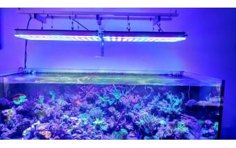 LED освещение в современных аквариумах