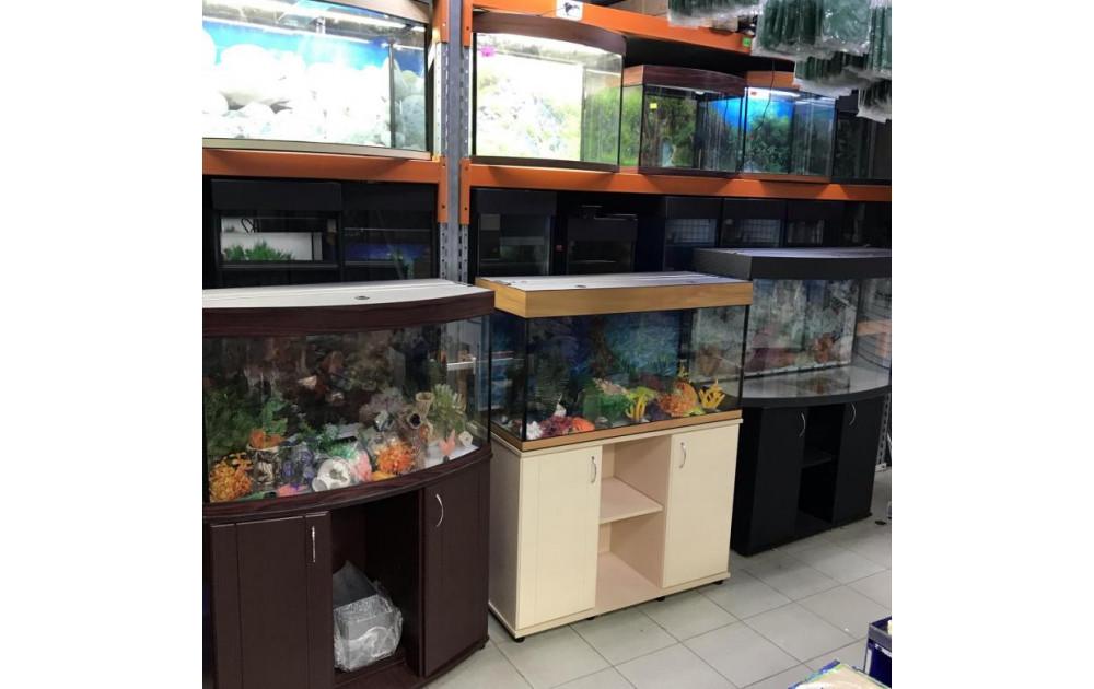 Доставляем аквариум по Москве на дом