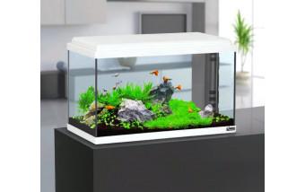Применение аквариумной химии в современных аквариумах