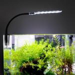 На сколько долго можно оставлять включённой подсветку аквариума?