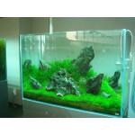В каком месте лучше установить аквариум?