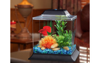 Установка аквариума