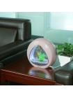 """Аквариумный комплект """"sunsun"""" YA-01 розовый, 4 л"""