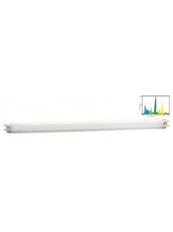Лампа ZelAqua Т8 10 Вт