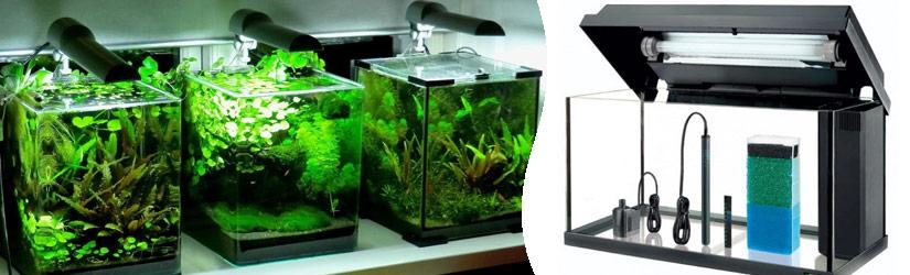 оборудование в аквариумах