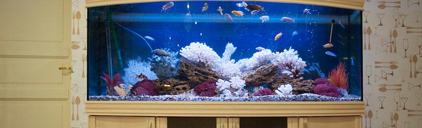 панорамный аквариум Seaprice