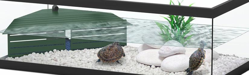 недорогой террариум для черепахи